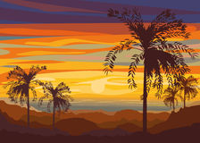 Sunset. Setting sun over the desert. Silhouettes of palm trees against the sky Royalty Free Stock Photo