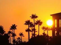 Sunset. Royalty Free Stock Photos