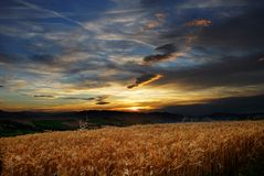Sunset. Over a wheat meadows Stock Photos