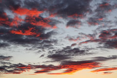 Sunset. View of the evening sky with reflection of the sunset in clouds Stock Images