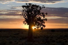 Sunset. Or sunrise over the desert in namibia Stock Images