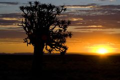 Sunset. Or sunrise over the desert in namibia Royalty Free Stock Images