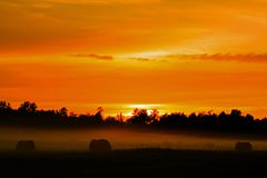Sunset. Fiery sunset over the pastureland Stock Image