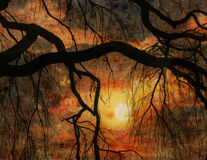 Sunset. And tree impressionist style digital painting Stock Photos