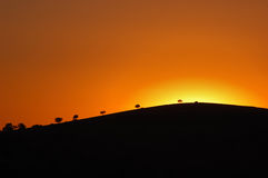 Sunset. In the grassland of Dai Qin Ta La, Inner Mongolia, China October, 2006 stock image