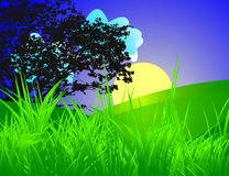 Sunset. Vector illustration, look for more great images in my portfolio stock illustration