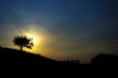 Sunset. The sunset of the grassland Royalty Free Stock Photography