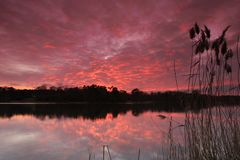 Sunset. Over Virginia Water, England Royalty Free Stock Photo