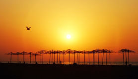 Sunset. Decline on an ocean coast Stock Photo