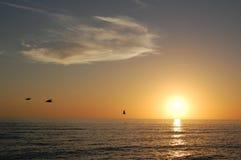 Sunset7 Royaltyfria Bilder