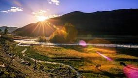 Free Sunset Royalty Free Stock Image - 82279766