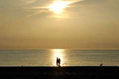 Sunset. Persons are walking on the island sylt, germany Royalty Free Stock Photography