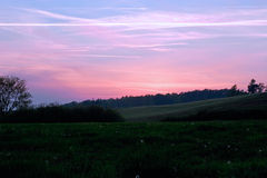 Sunset. In foreground a meadow with dandelions Royalty Free Stock Photography