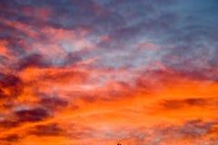 Sunset. Bloody sunset stock photos