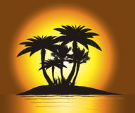 Sunset. On the island with palm's silhouette Royalty Free Stock Photos