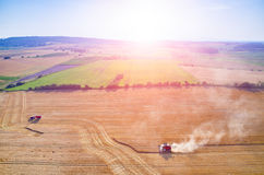 Sunset above the combines working on the wheat field Stock Photography