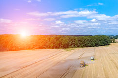 Sunset above the combines working on the wheat field Royalty Free Stock Photo