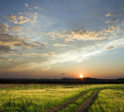 Sunset above field Royalty Free Stock Photo