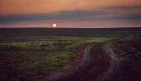 Sunset above the field and road. Purple sky, sunset and road through the field Stock Image