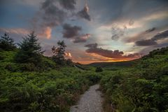 Sunset above forest in Ireland. Colorful sunset sky above a forest in Ireland Royalty Free Stock Photography