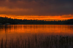 Sunset above forest lake Royalty Free Stock Photo