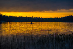 Sunset above forest lake Stock Image