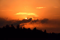 Sunset above a pine forest, beautifull colored sky. Sunset above a pine forest in Black Forest, Germany, colored sky and clouds stock photo