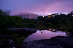 Free Sunset Above Rainforest, Sri Lanka Stock Images - 69494454
