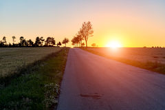 Sunset above the road between the fields Stock Photography