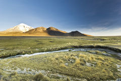 Sunset above volcano Sajama in Bolivia with river Royalty Free Stock Image