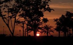 Sunset in Abu Dhabi Stock Image