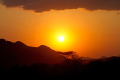 Sunset in Africa with shades of baobab trees Royalty Free Stock Photography