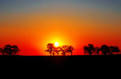 Sunset in Africa. Royalty Free Stock Photo