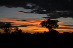 Sunset in Africa. We take this photo from Singita's airstrip in the Sabi Sands Stock Photos