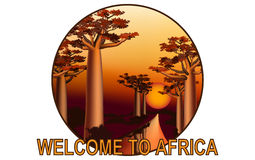 Sunset in the African baobab forest emblem 3 Royalty Free Stock Photos