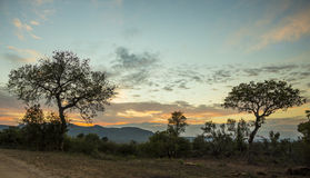 Sunset in the African bush Royalty Free Stock Photography
