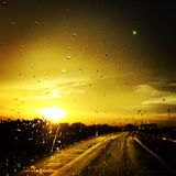 Sunset afterrain Stock Image
