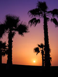 Sunset in Agadir, Morocco Royalty Free Stock Image