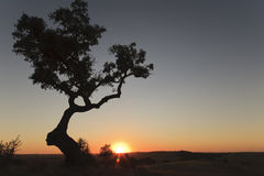 Sunset in the Alentejo. Alentejo is the largest region in Portugal, located between Lisbon and the Algarve Stock Photo