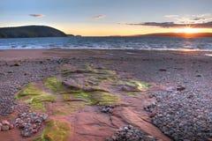 Sunset with algae on rocks Royalty Free Stock Photo
