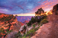 Sunset along Grand Canyon trail Stock Images