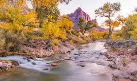 Sunset Along the Watchman Peak. Sunset at Watchman  peak along the Virgin river in Zion National Park, Utah Stock Images
