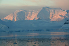 Sunset & alpenglow, pink mountains. And brash ice, - calm ocean,Paradise harbor, Antarctica Royalty Free Stock Images