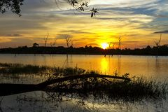 Sunset amd shadow tree. In lagoon at Mukdahan national park county of,Thailand Royalty Free Stock Images