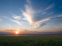 Sunset And Meadow Royalty Free Stock Photography