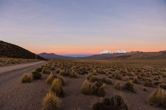 Sunset in Andes. Parinacota and Pomerade volcanos. High Andean landscape in the Andes. High Andean tundra landscape in the mountains of the Andes Royalty Free Stock Images