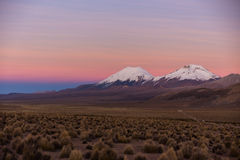 Sunset in Andes. Parinacota and Pomerade volcanos. High Andean landscape in the Andes. High Andean tundra landscape in the mountains of the Andes Stock Photo