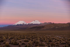 Sunset in Andes. Parinacota and Pomerade volcanos. High Andean landscape in the Andes. High Andean tundra landscape in the mountains of the Andes Royalty Free Stock Photography