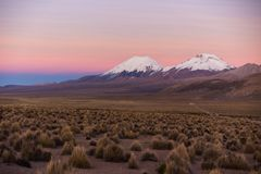 Sunset in Andes. Parinacota and Pomerade volcanos. High Andean landscape in the Andes. High Andean tundra landscape in the mountains of the Andes Royalty Free Stock Photos