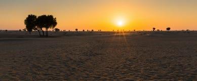 Sunset in the Arabian desert. Of Dubai stock photo